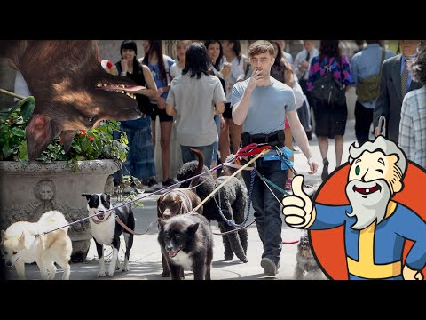 """LET'S BUY ALL THE DOGS!!!"" Fallout 4 Far Harbor DLC 1440p 60fps"