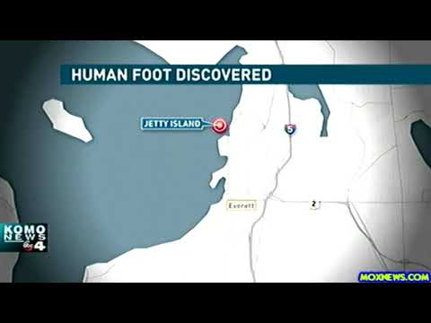Human Foot Found On Washington Coast!