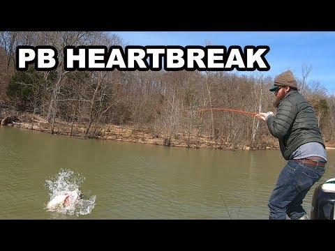 Where Are The FISH In KENTUCKY LAKE?!?! (MAJOR HEARTBREAK)