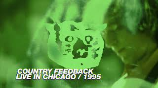 R.E.M. - Country Feedback (Live in Chicago / 1995 Monster Tour)