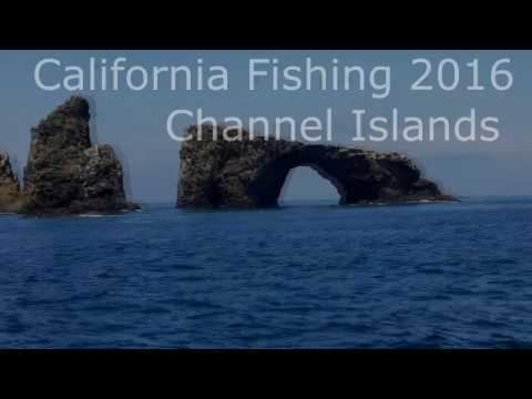 Southern California Fishing - Whitefish, Rockfish - Channel Islands-  Deep Sea