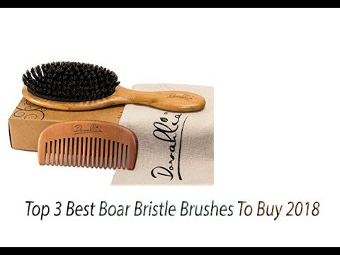 Top 3 Best Boar Bristle Brushes To Buy 2018 - Boar Bristle Brushes Reviews