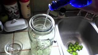 How To Make Fresh Black Walnut Tincture