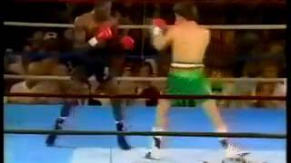 Julio Cesar Chavez Superman punch KNOCOUT ROGER MAYWEATHER