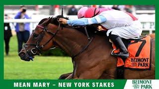 Vidéo de la course PMU NEW YORK STAKES