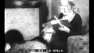 Repeat youtube video Zoofilia anglosassone