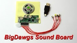 BigDawgs Sound Board Review and Demo | James Bruton