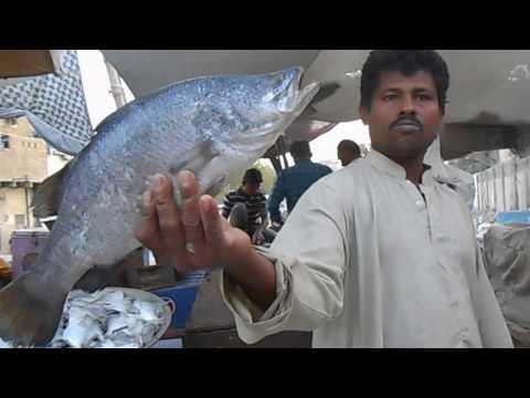 Fish Market in Karachi Pakistan - Bangla Bazar