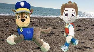Juguetes paw patrol español: chase y bebe entrenamiento en la playa. Nuevo video patrulla canina