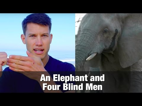 An Elephant and Four Blind Men
