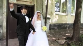 Кингисепп свадьба