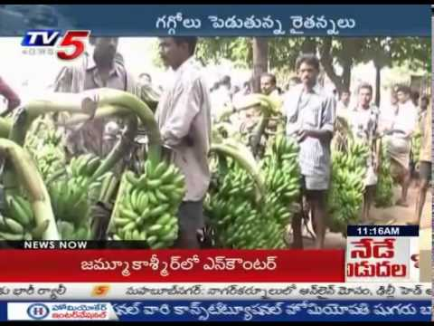 Banana Prices Falls By Half | Ravulapalem Banana Farmers Worries : TV5 News