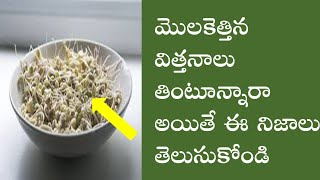 Amazing Health Secrets Of Sprouts Salad | Sprouts Salad For Weight Loss | In Telugu