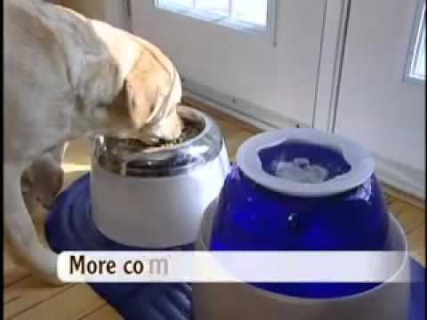 Dogit Design Fresh Clear Large Dog Drinking Fountain
