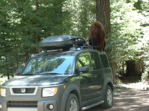 How To Get To Yosemite Without A Car