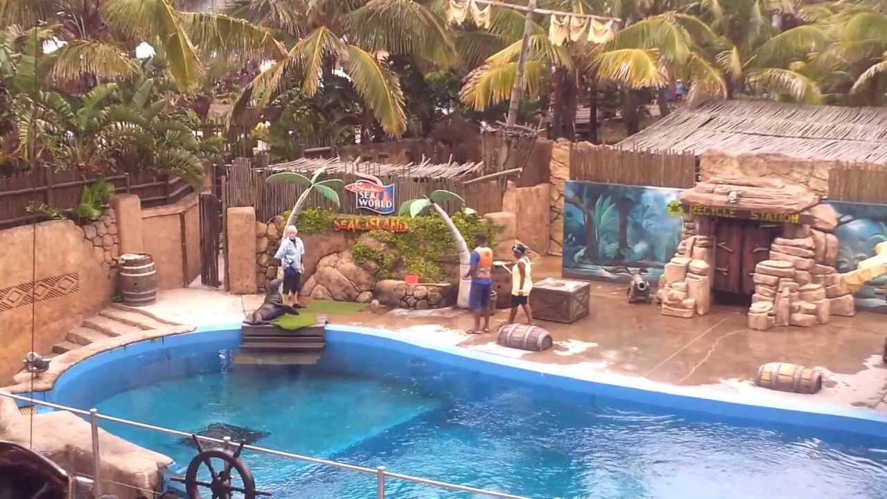 uShaka Marine World, Durban, SA - seal show - YouTube
