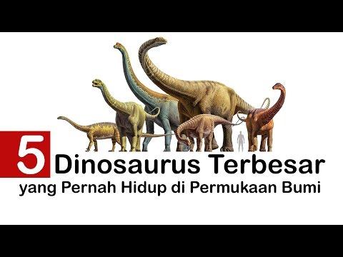 5 LIma dinosaurus TERbeSar yang pernah hidup di permukaan bumi