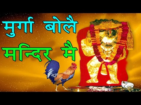 Murga Bole Mandir Mein | Mehndipur Balaji Bhajan 2016 | Sonu Kaushik Hit Bhajan | Studio Star