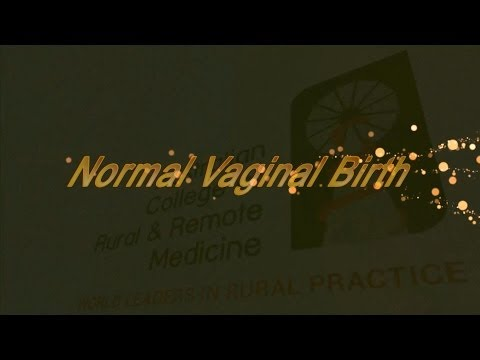 JAMIT - Normal Vaginal Birth - Lyn Gum