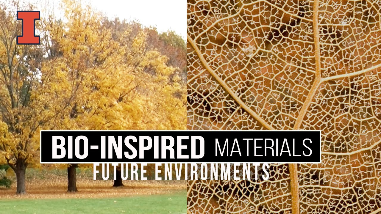 A screenshot from Future Environments: Bio-Inspired Materials