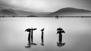 Ludovico Einaudi - Seven Days Walking - Day Two - A Sense Of Symmetry