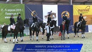 Эквирос 2014-выводка лошадей русской верховой породы