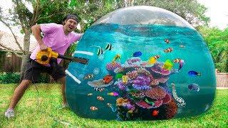 FIRST EVER BUBBLE BALL AQUARIUM! *fish inside!*