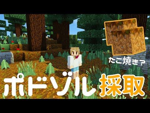 【マインクラフト】#176 ポドゾルを探しにメガタイガへ!Podzol【Minecraft】