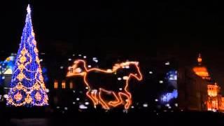 Лазерное шоу в Санкт-Петербурге на дворцовой площади