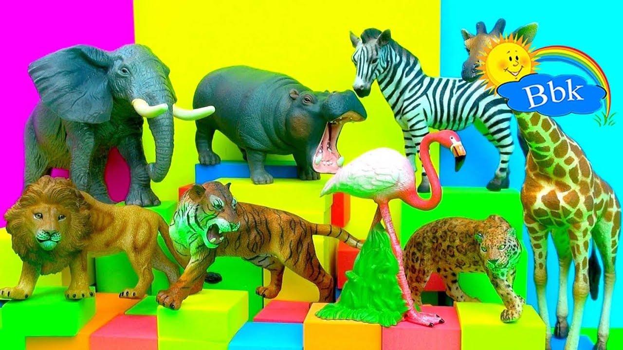 Домашние и дикие животные. Зоопарк. Животные для детей ...