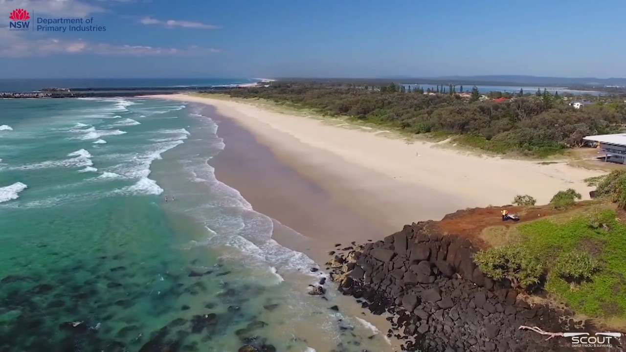Ballina Drone Footage Captures Shark Vs  Surfer Close
