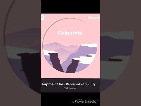 Say It Ain't So Cover| Calpurnia Spotify Session