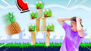 PLAYING ANGRY BIRDS IN REAL LIFE CHALLENGE!