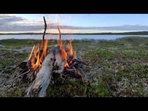 Flåklypa (Pinchcliffe) - Guitar and Harmonica