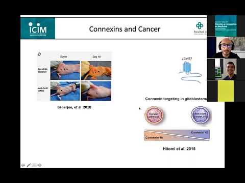 Seminario Académico 23-12-2020: Centro de Fisiología Celular e Integrativa del ICIM.