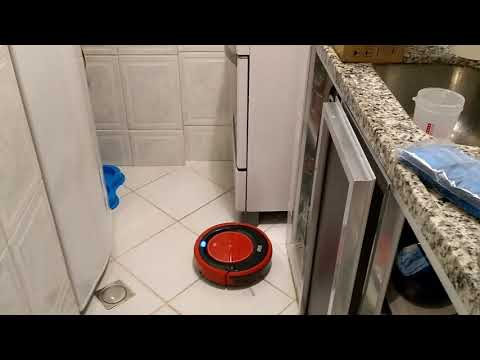 Shihtzu and the robot vacuum cleaner