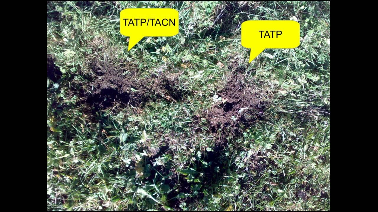 Download TATP Vs TACN/TATP 5g