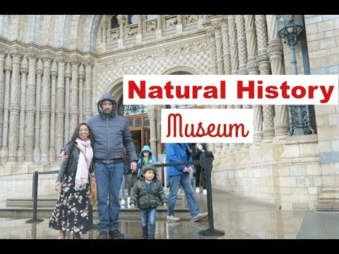 Timmy's First Visit To Museum! || National History Museum