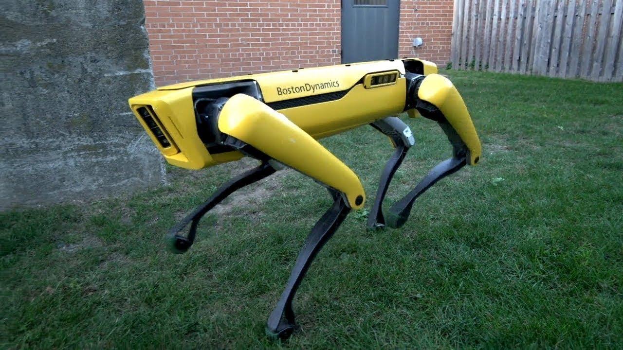 Empresa americana produzirá 1.000 robôs-cachorros anualmente a partir de 2019