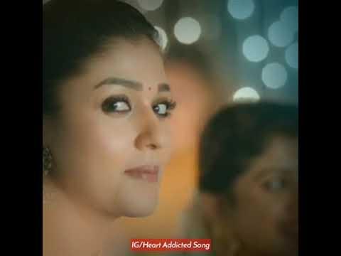 vanam-than-printhalum-video-status-720p-|-nayanthara-&-nivin-pauly-love-whatsapp-status-|-2019-|
