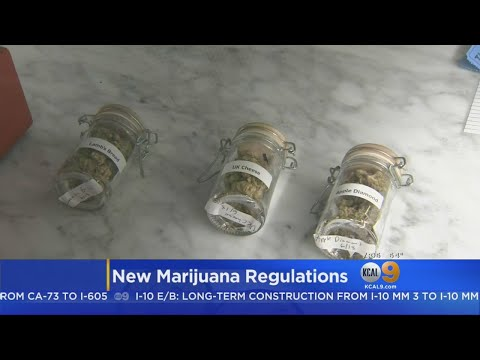 New Laws Set To Go Into Effect In California