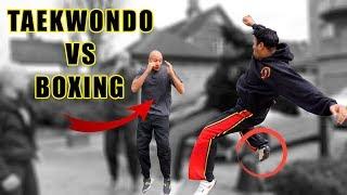 Taekwondo vs Boxing