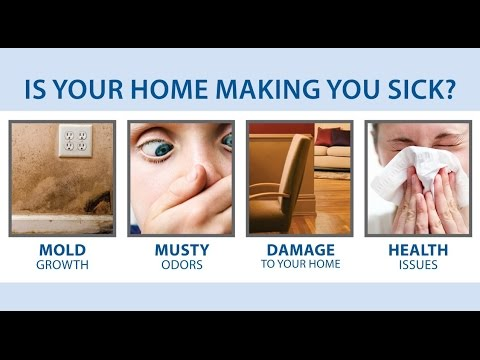 Is Your Home Making You Sick? | Prevent Humidty & Mold | The Basement Doctor - NBC4 Daytime Columbus