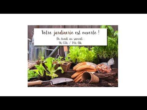 Spot Radio Alouette Forum Et Mixx Fm Delbard Youtube