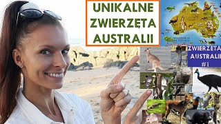 UNIKALNE ZWIERZĘTA AUSTRALII - (Zwierzęta Australii #1)