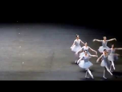Ballet humor