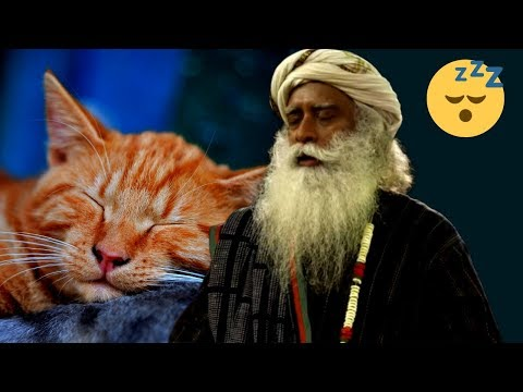 Do We Need A Power Nap During The Day? Sadhguru Wisdom