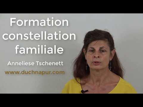 Formation constellation familiale