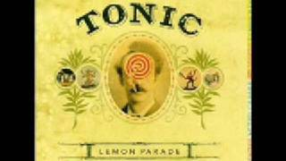 Tonic - if you could only see lyrics