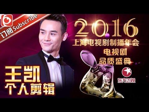 2016中国电视剧品质盛典王凯个人剪辑
